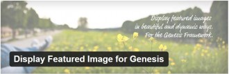 Display Featured Image for Genesis