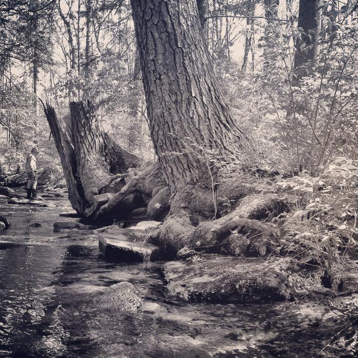 fairyland hike