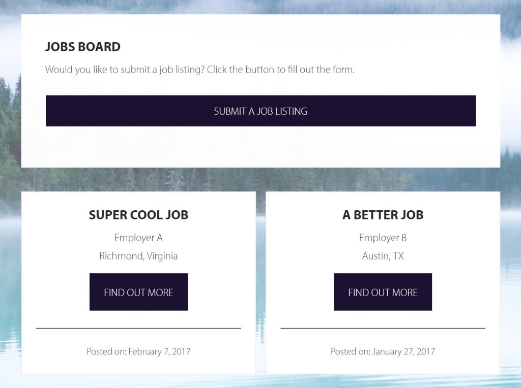 Jobs Board Intro with Gravity Form