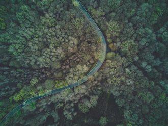 Flexible Adjacent Entry Navigation for Single Posts in WordPress